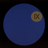 Dark Side Of The Moog IX