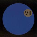 Dark Side Of The Moog VII
