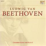 Chamber Music for Flute I