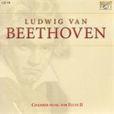 Chamber Music for Flute II