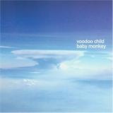 Baby Monkey [feat. Voodoo Child]