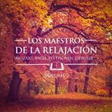 Los Maestros De La Relajación II