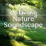 Calming Nature Soundscape